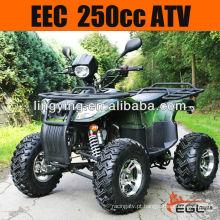 CEE 250 fora estrada Quad ATV 250cc