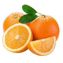 2015 New Crop Fresh Naval Orange