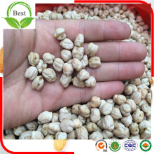 Good Taste Sizes Kabuli Chickpeas From China