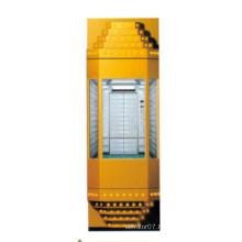 Fjzy Panoramic Cheap Elevator-Ascensor2049