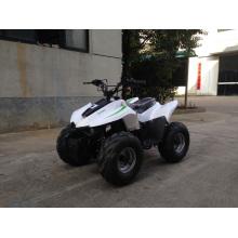 Mini Quad ATV 49cc