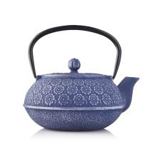 Cast Iron Teapot in Water Pot & Kettles
