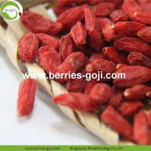 New Harvest Buy Bulk Package Bayas comunes de Goji