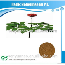Natural Pure Radix Notoginseng PE