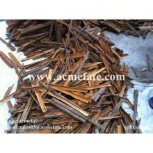 Cassia quebrada da China
