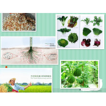 Soluble Organic Fertilizer Fulvic Acid