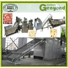 Linha de produção de chips de frutas secas com ar quente