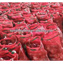 Preço chinês da cebola fresca 2012