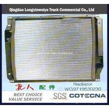Full Range China Truck Parts HOWO Truck Parts -Radiator