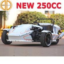 Боде доставленных заверил новый ЕЭС 250cc ЗТР Трайк родстер на продажу более подробно