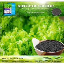 release humic acid Organic biological fertilizer