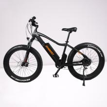 China manufacturer customized 12.8Ah electric mountain bike 36V/48V 250W/350W/500W electric bike