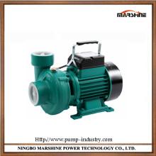 Horizontal pompe centrifuge portable 220V