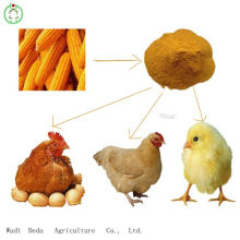 Hot Sale 60% Yellow Corn Gluten Meal Chicken Food