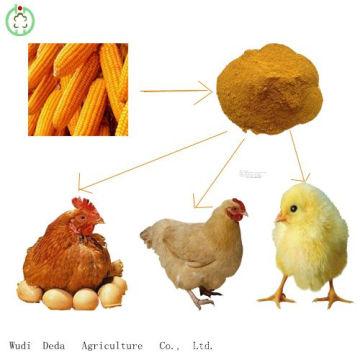 Venta caliente 60% de harina amarilla de gluten de maíz Alimento de pollo
