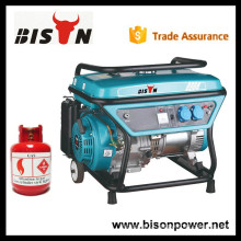 Household Power LPG Gas Generator China 2kw 2 kva Gas Electric Generator For Sale