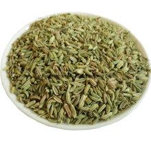 Melhor qualidade sementes de cominho secas