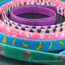 Durable Plastic Synthetic Coated Polyester Webbing Strap for Horse Harness