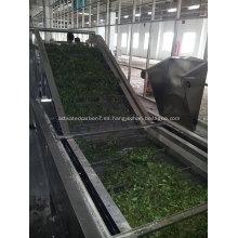 Equipo de secado por correa de carbón activado