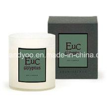 Geschenk Natürliche Soja-Kerze in Klarglas-Glas mit Box