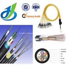 Câble fibre optique multi-modes 6 cœurs