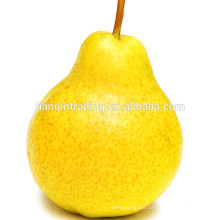 hebei ya pear price