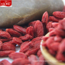 Manufacturer price wholesale new chinese wolf berry