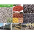 Nueva llegada de semillas de calabaza de Mongolia Interior para comer