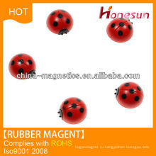 Small round magnetic chuck made of rubber sheet with pvc coleoptera insects
