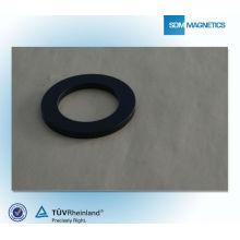 Tamanho do círculo do ímã permanente com revestimento epóxi de alta qualidade