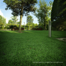 China wholesale outdoor 50 mm PPE Material synthetic grass for garden