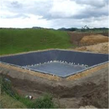 Waterproofing HDPE Liner for Roofs/Ponds/Lakes/Pool