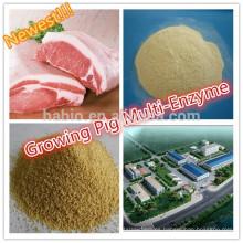 Crecimiento de la enzima compuesta de cerdo / multi enzima