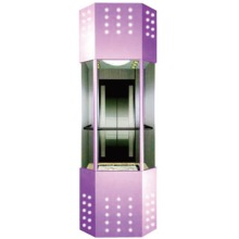 Commercial Personal Glass Elevator