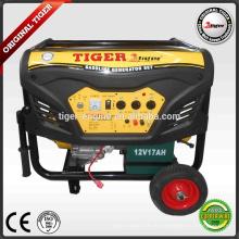 7000W Benzin-Generatoren Sets TMG8800DXE