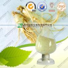 Raie de ginseng séché en poudre de racine de ginseng enregistrée par la FDA