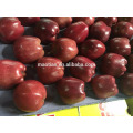 Fresh Red Delicious