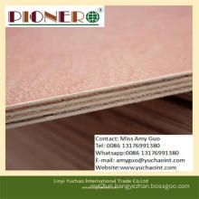 High Profit Hot Sale Commercial Plywood with BB/CC Grade