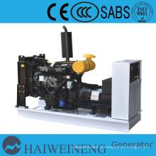 La puissance de générateur diesel refroidi par eau de 25kva Ricardo diesel moteur (générateur de Chine)