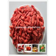 Chinesisches Boxthorn, Goji, Gou Qi Zi, Wolfberry / Goji Extrakt / organische Goji Beeren Lycium