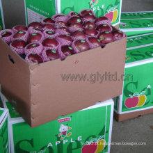 Com Vermelho Escuro Vermelho Vermelho Delicioso Apple / Huaniu Apple