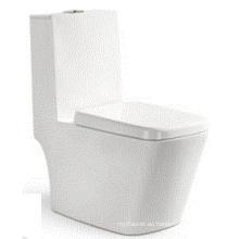 China Lavavajillas lavabo de una pieza Wc (6507)