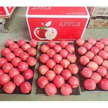 Manzanas Frescas Red Lady