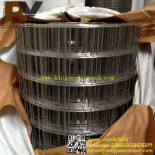 Isolation Wall Stainless Steel Welded Wire Mesh