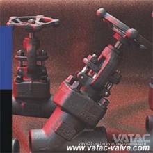 """1/2 """"~ 2"""" 800lb Y Tipo Globe Valve"""