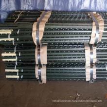 studded 10 ft t shape post wholesale