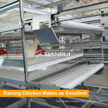 Broiler Chicken Battery Cage for sale in Pilipinas