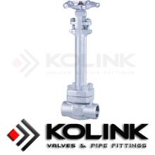 Válvula de Globo Criogênico / de Baixa Temperatura, Corpo de Aço Inoxidável