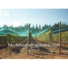 Agriculture insect mesh/Fruit tree mesh netting