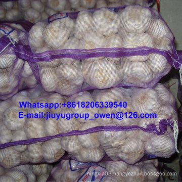 Shandong Origin Fresh White Garlic Mesh Bag/Carton